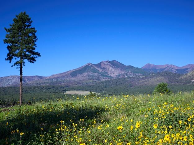 Flagstaff Hills-web