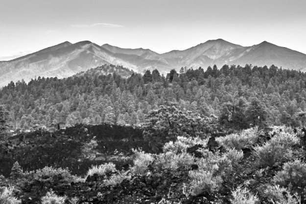 The San Francisco Peaks overlooking a lava field at Sunset Crater.