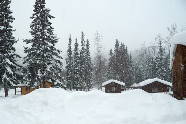 17-02-27 Alaska 0039