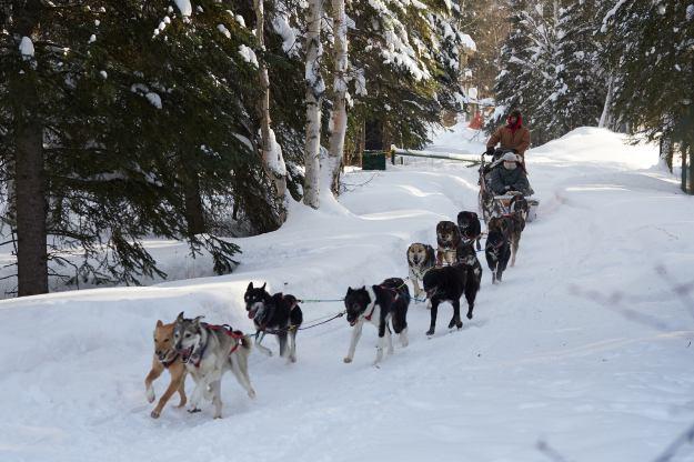 17-02-28 Alaska 0268