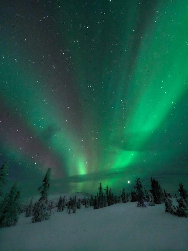 17-03-01 Alaska 0504