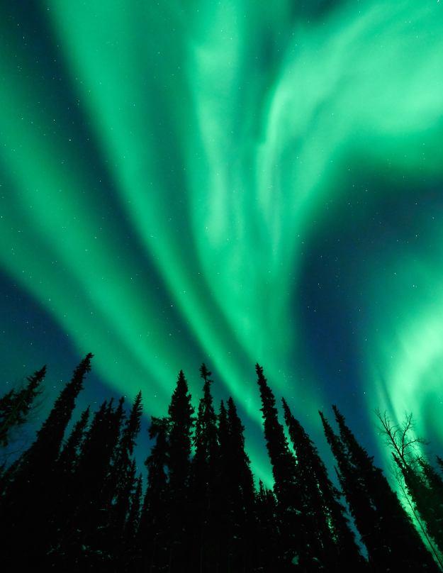 17-03-02 Alaska 0794