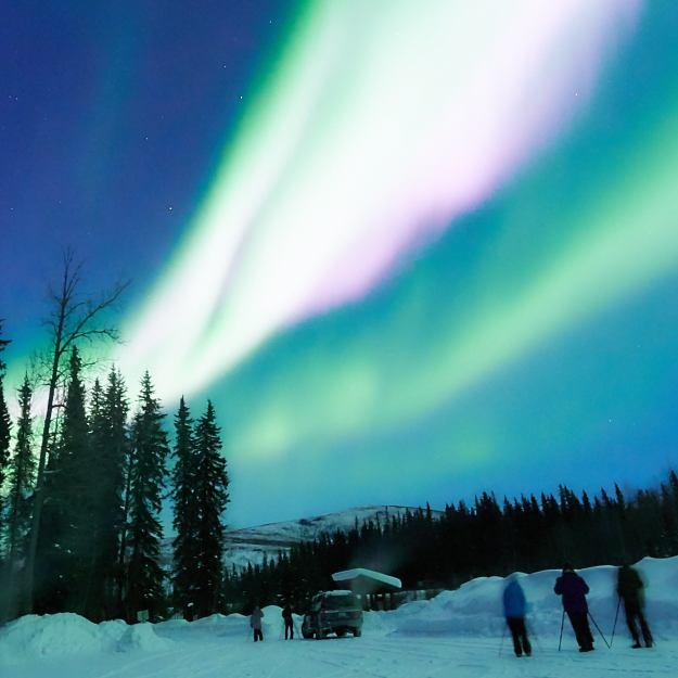 17-03-02 Alaska 0811