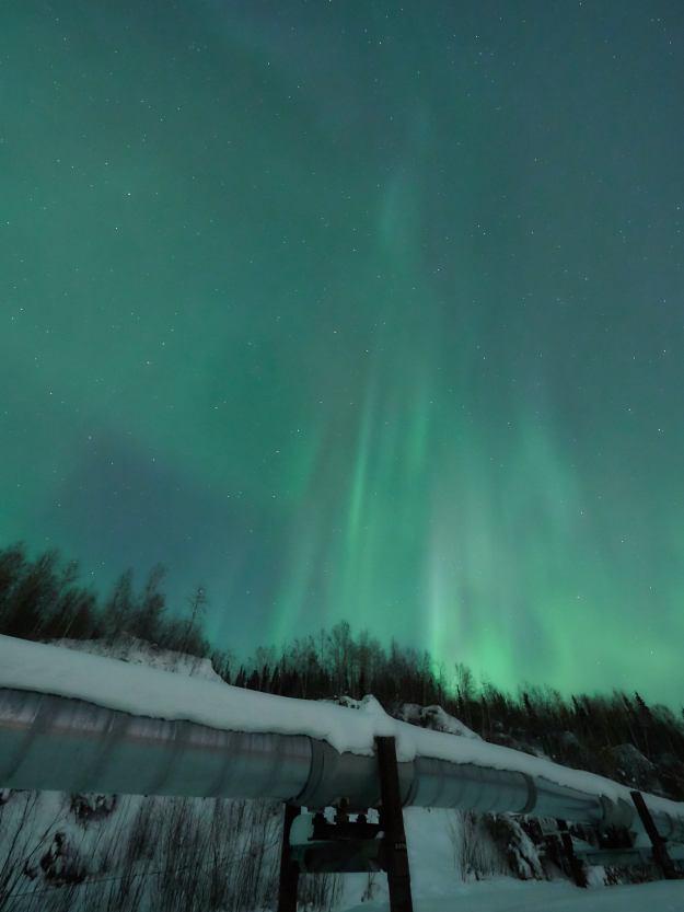 17-03-03 Alaska 1010