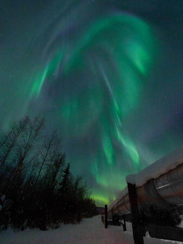 17-03-03 Alaska 1085 1