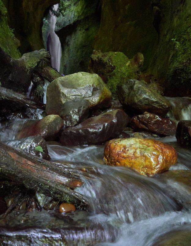 Gold Rock Stream